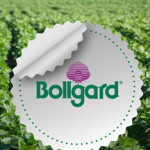 پایان مجادله حقوقی گسترده یک شرکت فعال در حوزه بیوفناوری با تولیدکنندگان بذرهای گیاهی در هند