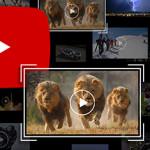 سلاح پیشنهادی یوتیوب برای مبارزه با نقض کپیرایت