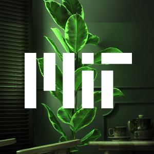 استفاده از نسل جدیدی از گیاهان خانگی به عنوان چراغ مطالعه