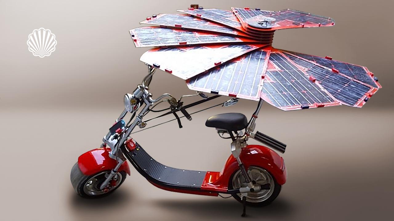 الهام از گل آفتابگردان برای ساخت یک شارژر خورشیدی برای باتری خودروهای الکتریکی