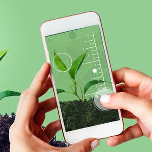 استفاده از تلفن همراه برای اندازهگیری و نظارت بر رشد گیاهان