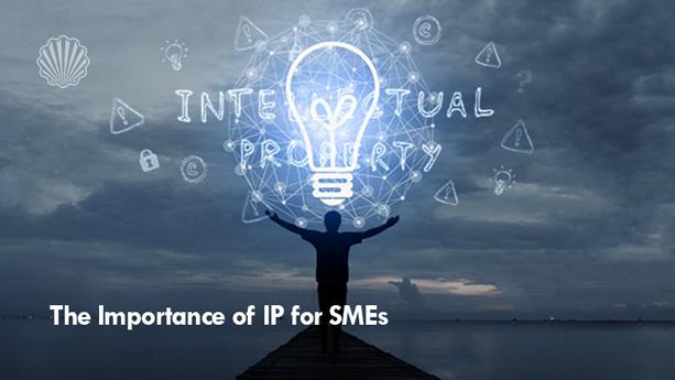اهمیت «IP» در شرکتهای کوچک و متوسط