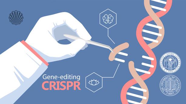 نوآوریهای ادامهدار دانشگاه کالیفرنیا برای توسعه فناوری «CRISPR»