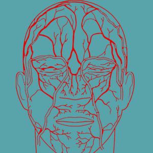استفاده از الگوی رگهای خونی موجود در چهره برای احراز هویت کاربران آیفون