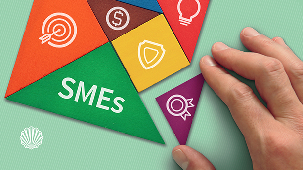 مدیریت پتنت در کسبوکارهای کوچک و متوسط کارآفرین