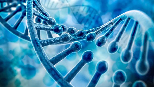 فناوری اصلاح ژنتیک «CRISPR»